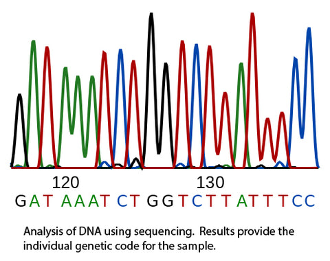Results from sequencing a DNA sample