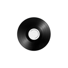 Load image into Gallery viewer, (AUCTION #2) SKYSCRAPER ANONYMOUS VINYL - TEST PRESSING