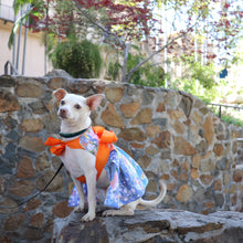 Load image into Gallery viewer, Yukata-inspired sun dress for dogs
