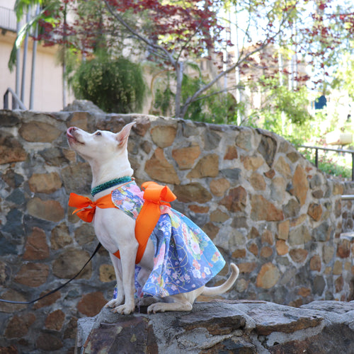 Yukata-inspired sun dress for dogs