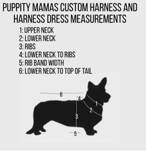 Load image into Gallery viewer, Custom dog or puppy reversible safety harness