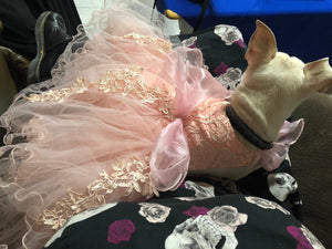 Bridesmaid, Flower Girl, Wedding or Ball Gown for Dogs: One Formal Party Dog Dress with extra full petticoat and lace trim in 9 colors!