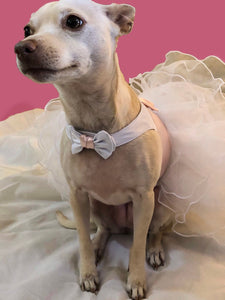 LouLou Custom Bridesmaid, Flower Girl, Wedding, party, or Ball Gown for Dogs: Formal Party Dog Dress w Ruffles + pearls/rhinestones/lace