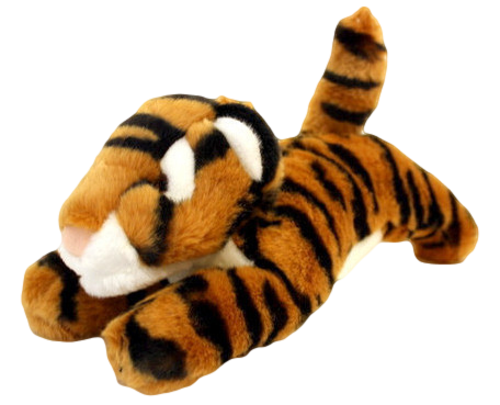 Boomer the Tiger