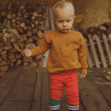Load image into Gallery viewer, BOBO CHOSES Ursa Major Sweatshirt by BOBO CHOSES - Mini Pop Style