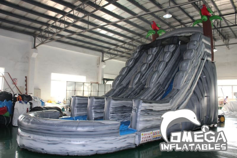 20FT Parrots Dual Lane Wet Dry Slide