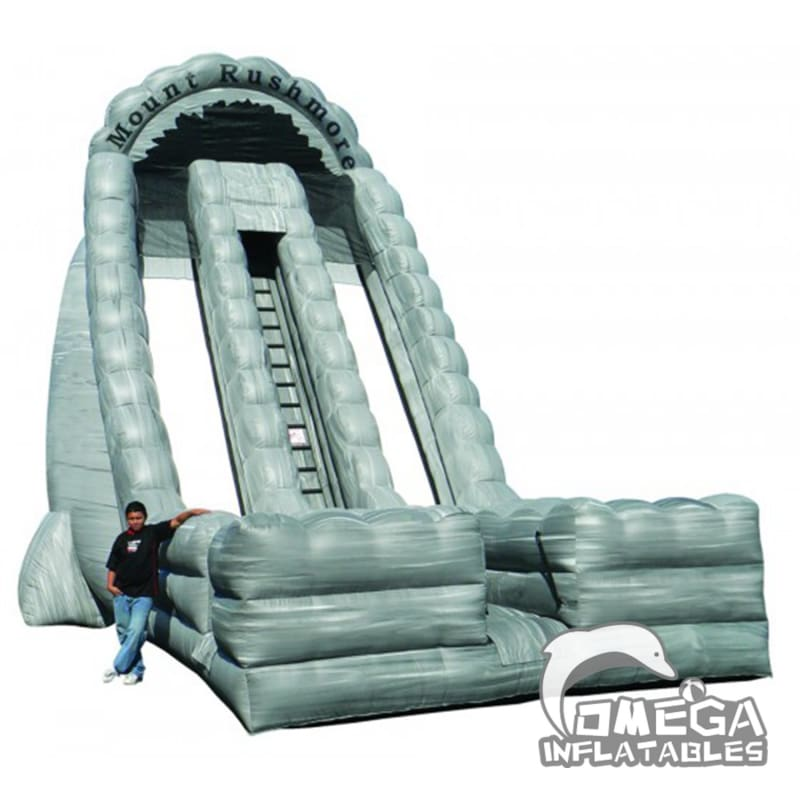 27ft Mount Rushmore Dual Lanes Dry Slide