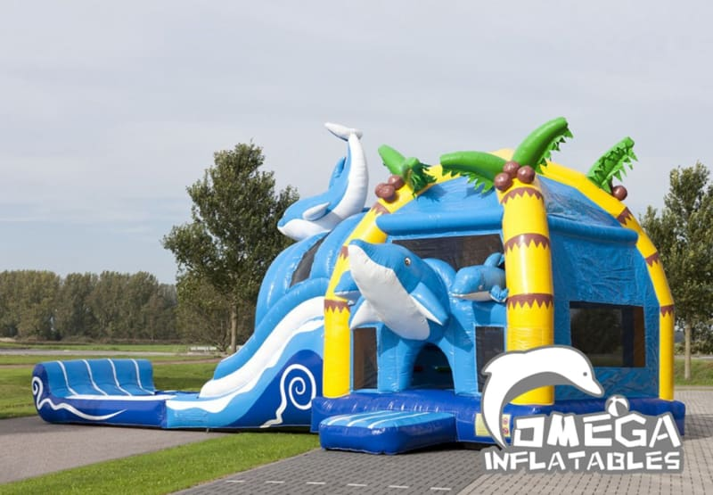 Large Inflatable Dolphin Jumper Combo