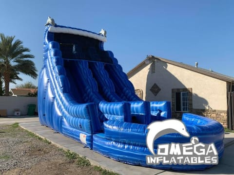20FT Dolphin Marble Dual Lane Water Slide