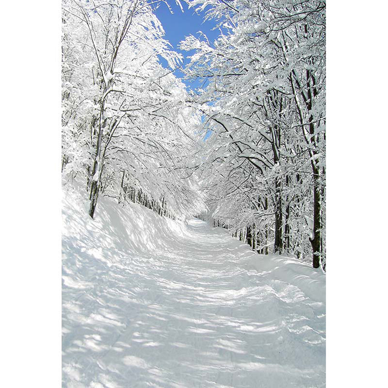 photography backdrops forest -photo backdrop snow white -photo booth backdrop nature -photo backdrop snow road -photography backdrops frosty