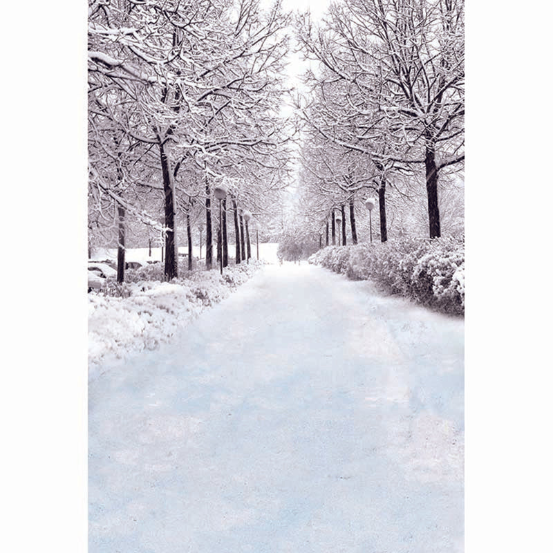 photography backdrops trees -frost backdrop- Snow backdrop -Snow Road photo backdrop- snow landscape background - photo booth props christmas -photo booth props winter scenery -photography backdrops 8x12 snow -photography backdrops winter snow