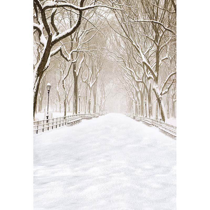 photography backdrops forest -Snow backdrop - Snow Road backdrop -Snow Wedding photo backdrop- snow landscape background - photo booth props christmas -photo booth props winter scenery -photography backdrops 8x12 snow -photography backdrops winter snow