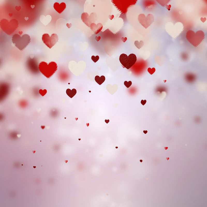 photo backdrop Valentine's Day- red heart photo backdrop - red photo booth backdrop -photo backdrop Wonderland -photography backdrops love-adults backgrounds