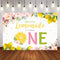 Lemon Photography Background Baby Shower Birthday Party Flowers Sweet Girl Photophone Backdrop Photo Studio