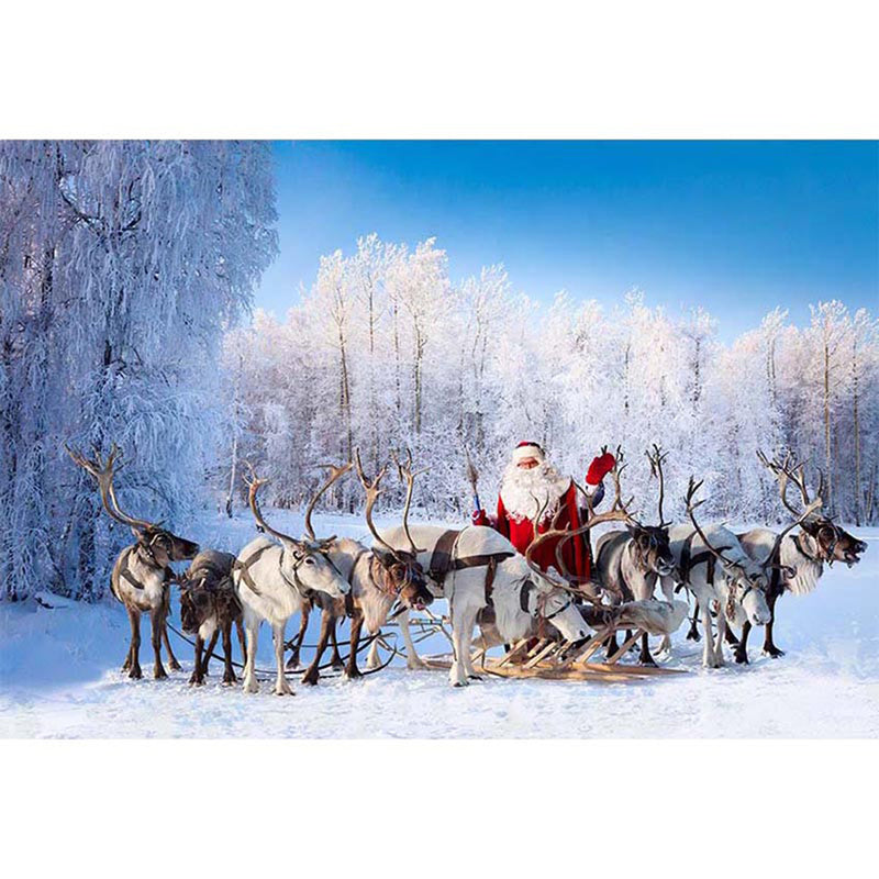 Winter Snow Photography Backdrops Christmas Santa Background Backdrops Elk Snow Forest Scenery Props Vinyl photo Backdrop Child