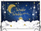 Twinkle Little Star Backdrop Shinning Sliver and Gold Star Glitter Photo Background Gold Moon Newborn Kid
