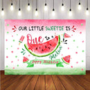 Newborn Baby Photography Background Summer Watermelon Painting Fruit Party Backdrop Decor Photocall Banner Backdrop Photo Studio