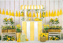 Photography Backdrop Lemon Fruit Birthday Party Decoration White Wooden Baby Newborn Portrait Photo Background for Photo Studio