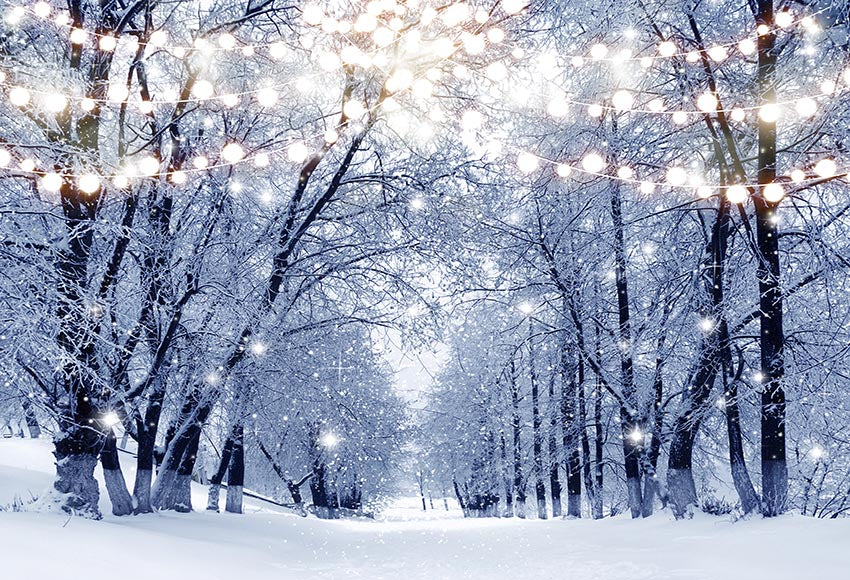 2020 winter snow photography backdrops christmas background backdrops dreamybackdrop dreamybackdrop