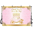 Pink princess backdrop for photography carriage fairy Tale background for photo studio customize backdrop newborn baby shower