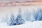 snow scenes photo backdrop winter snow road forest photography background interior decoration photo booth props Merry Xmas backdrops