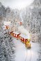 snow scenery photo backdrop winter snow forest photography background train track snow photo booth props forest backdrop 2020