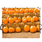 halloween theme photo booth backdrop Pumpkin Lantern backdrop for picture kids photography background Pumpkin 10x8 photo props party