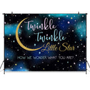 twinkle twinkle Little Star Backdrop Twinkly Smart Gender Reveal Party Background Pink or Blue Photo Booth Backdrops