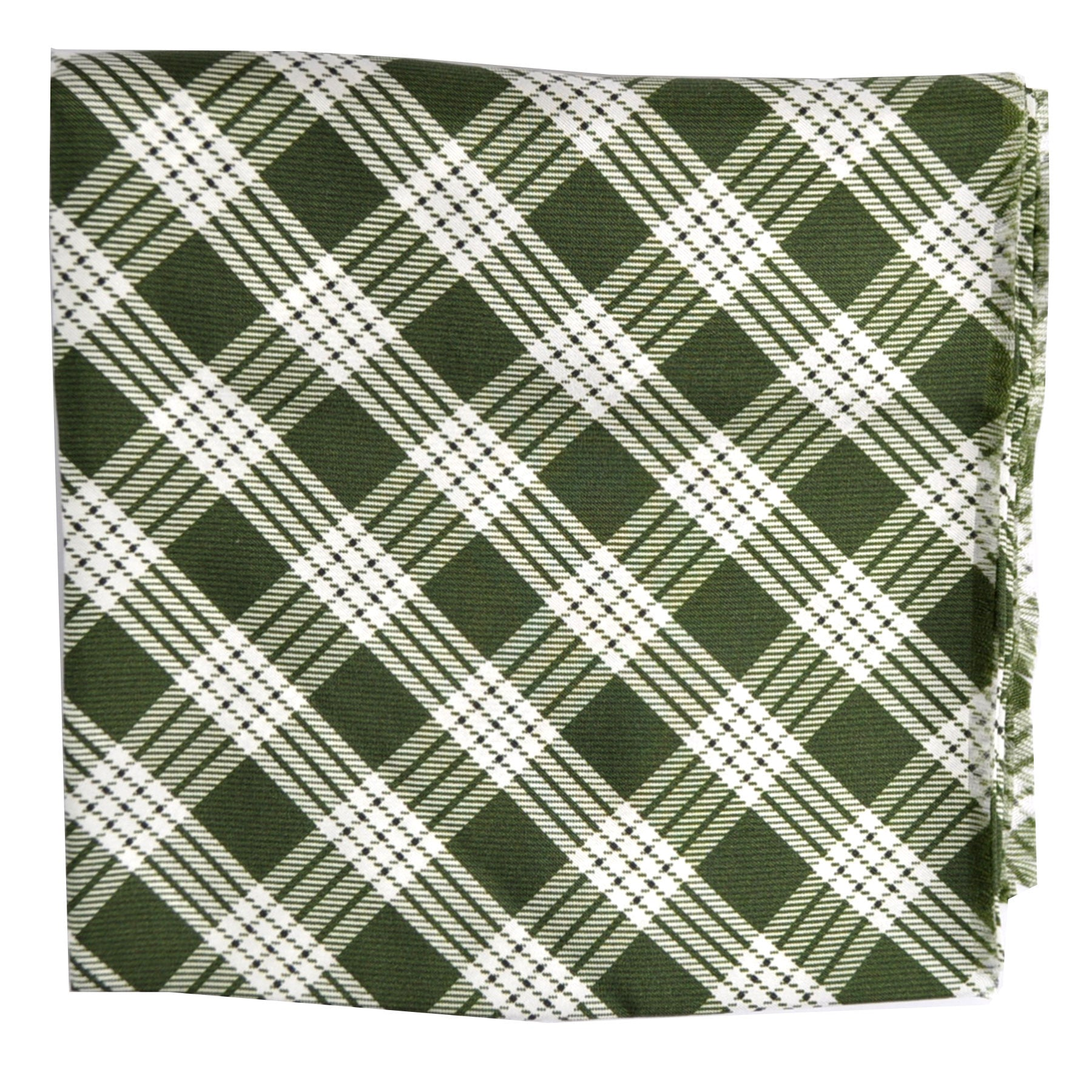 Agnona Scarf Green White Plaid FINAL SALE