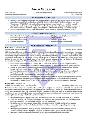 Executive Accent Resume Template