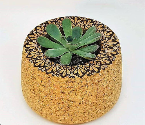 Plant holder Made of Agglomerated Cork