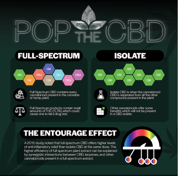 Full Spectrum vs CBD Isolate | Windansea Coffee