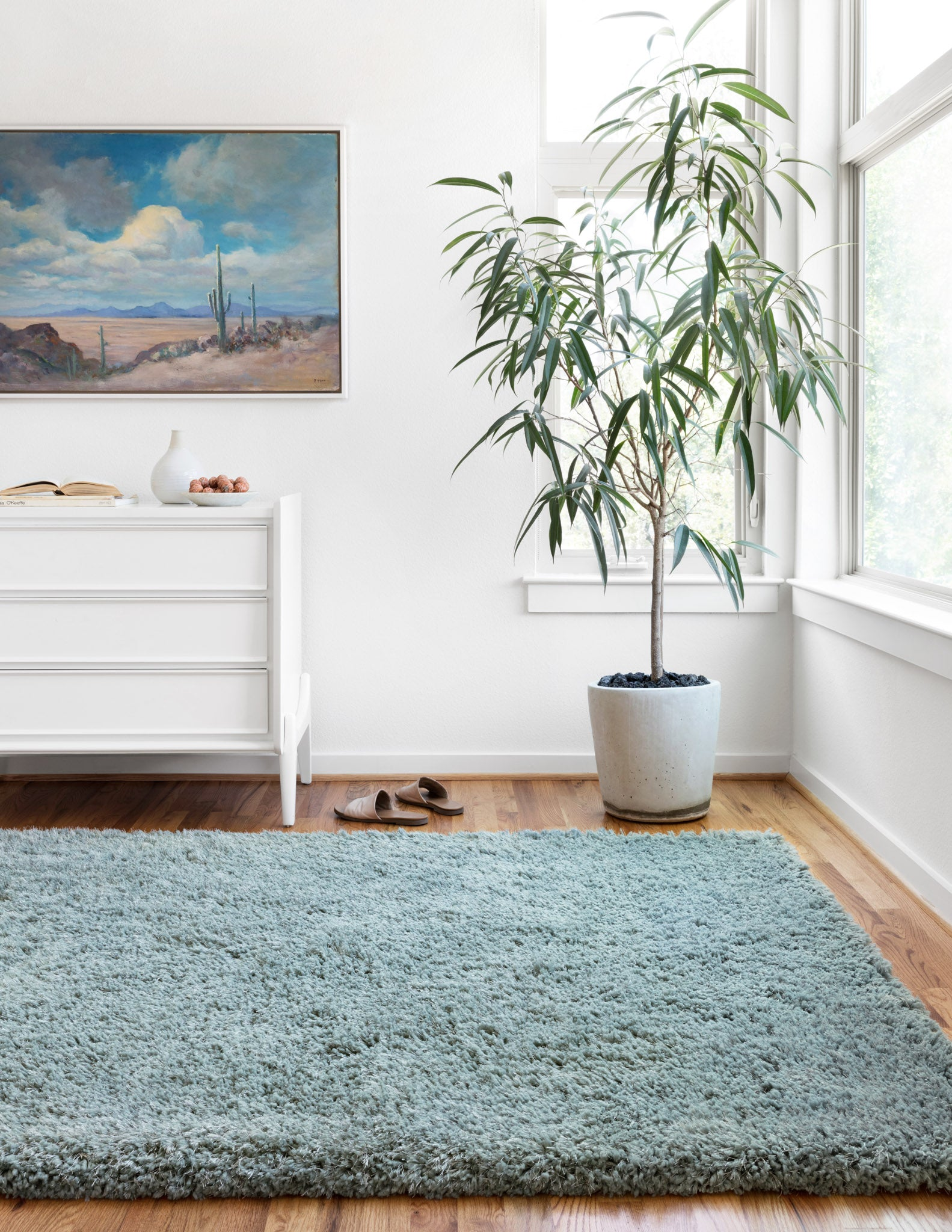 Simple Ways to Maintain your Shag Rug