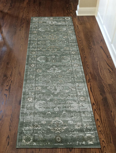 Allora 3562 Green Area Rug (2'2 x 7'7)