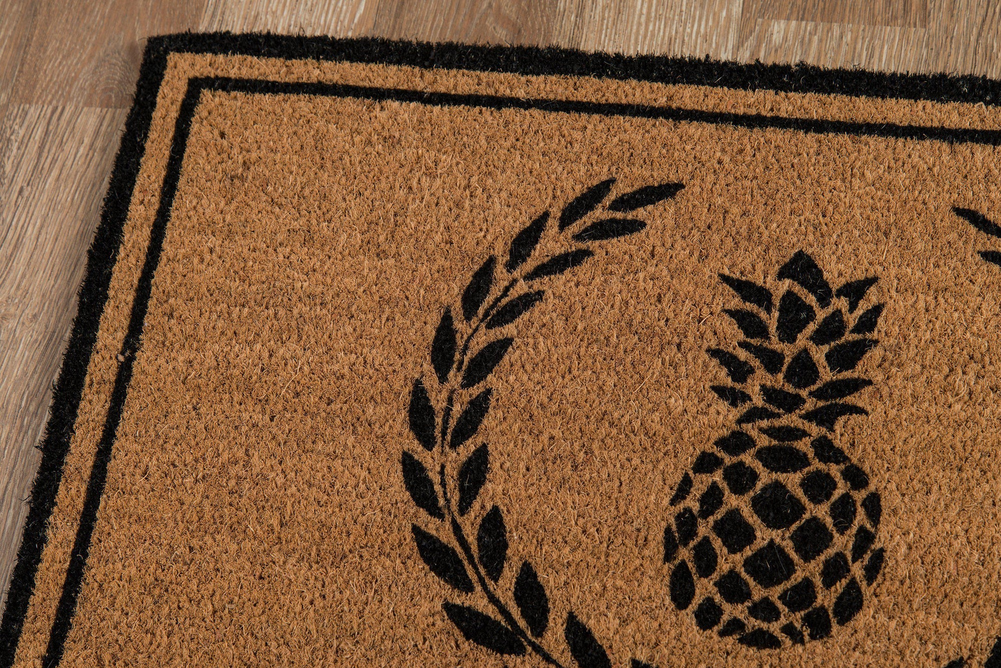 "Erin Gates by Momeni Park PAR-1 Pineapple Black Area Rug-Area Rug-Momeni-1'6"" X 2'6""-The Rug Truck"