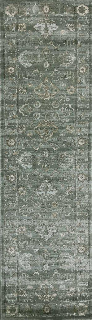 Allora 3562 Green Area Rug 22 X 77