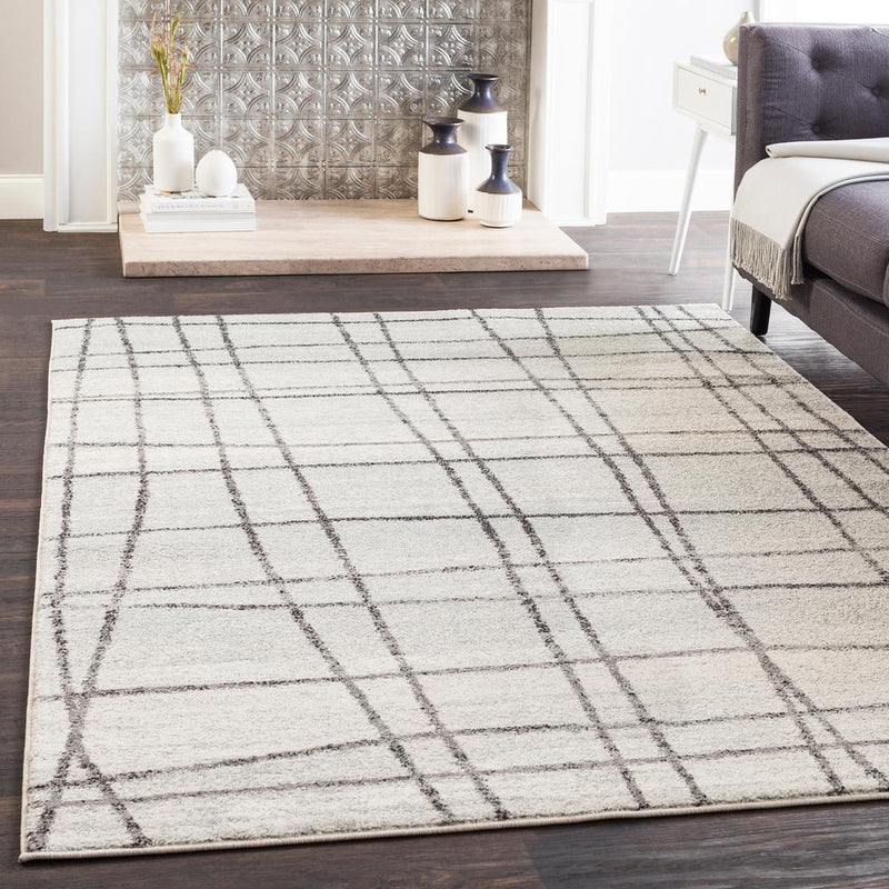 Elaziz ELZ-2329 Light Gray Area Rug-Area Rug-Surya-2' x 3'-The Rug Truck