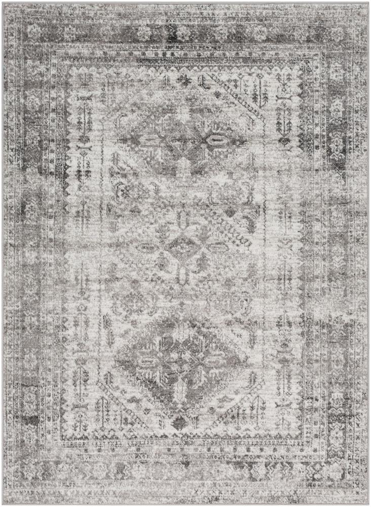"Monte Carlo MNC-2314 Light Gray Area Rug-Area Rug-Surya-3'11"" x 5'7""-The Rug Truck"
