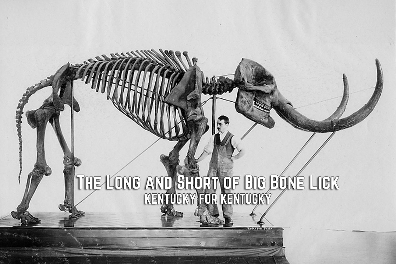 The Long and Short of Big Bone Lick