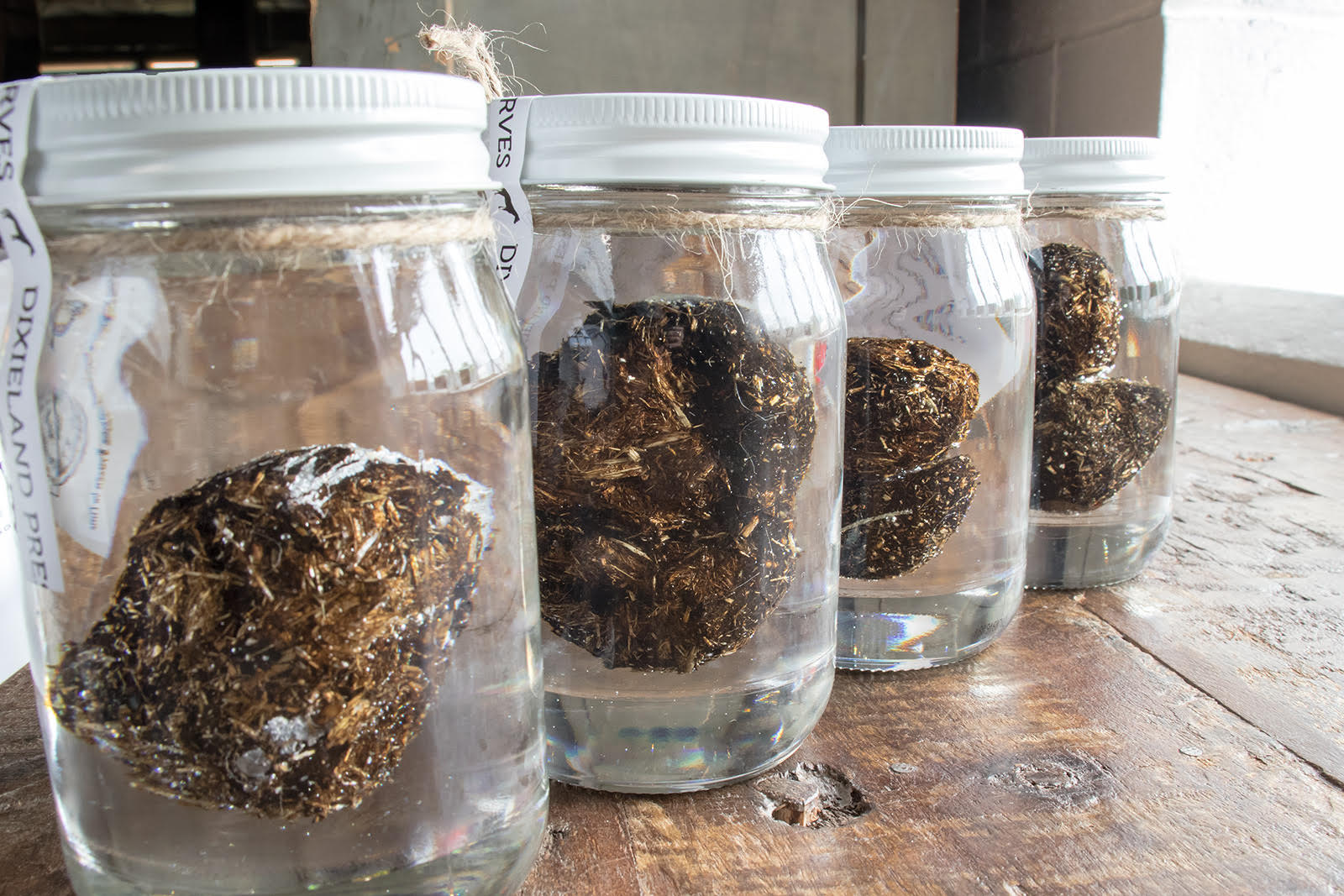 PRESERVED KENTUCKY DERBY HORSE TURDS!
