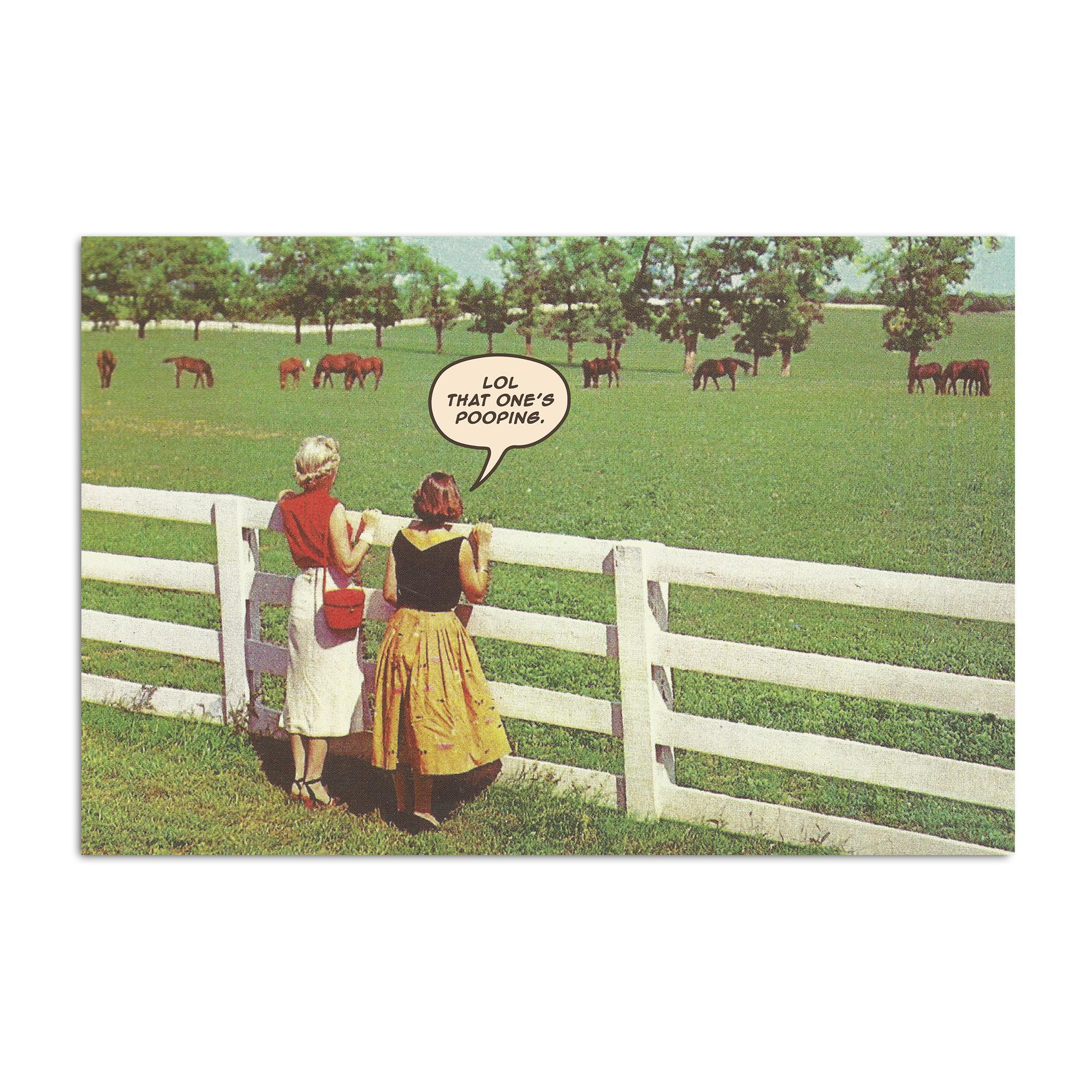 Horse Pooping Postcard-Odds and Ends-KY for KY Store