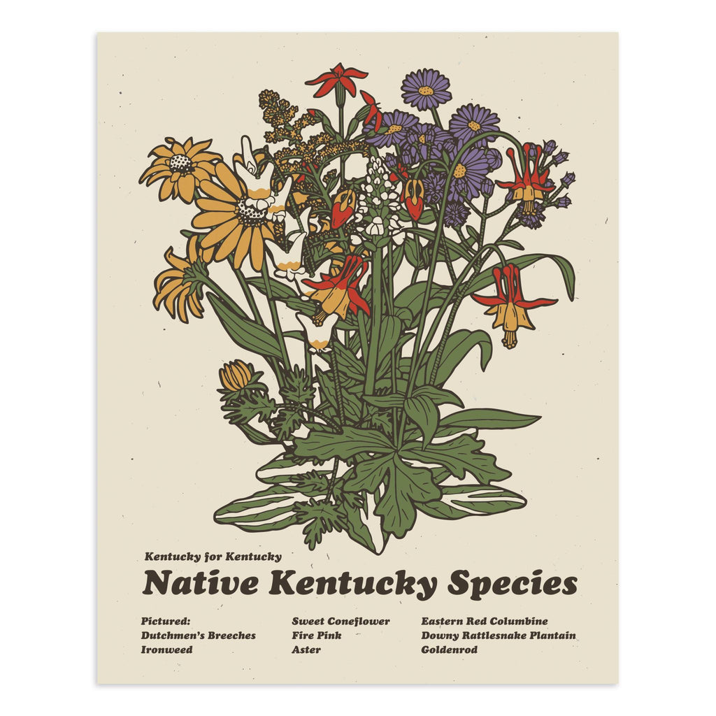 Kentucky Flora Print (Cream)-Prints-KY for KY Store