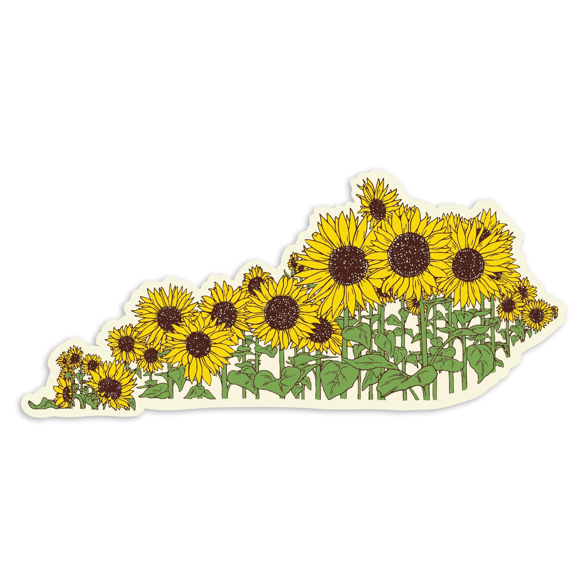 Sunflower Ky Sticker-Odds and Ends-KY for KY Store