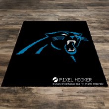Load image into Gallery viewer, Carolina Panthers