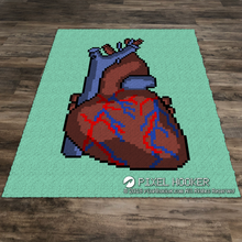 Load image into Gallery viewer, Human Heart