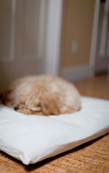 As seen on HGTV, Canvas Wolfii Dog Bed Cover in Pure Cream, SM to XL Covers for Dog Beds