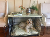 Luxe Scott Living Dog Crate Cover and Dog Bed Cover COMBO, Abydos Trumpet Belgian Collection