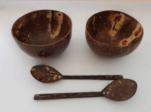 Two coconut bowls and two spoons.