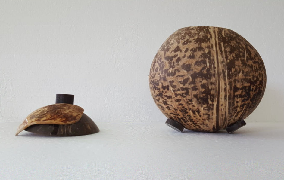 A multipurpose coconut bowl with the lid next to it.