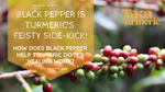 BLACK PEPPER IS TURMERIC'S FEISTY SIDE-KICK